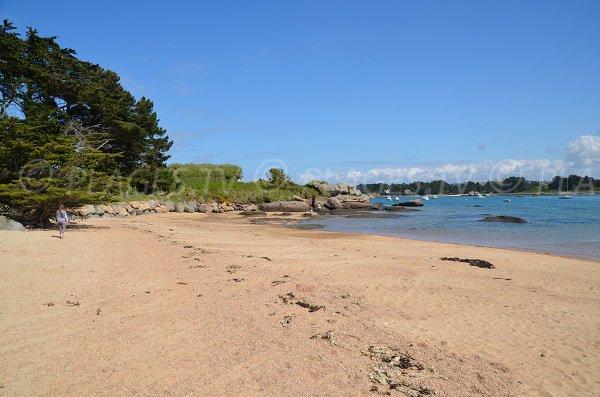 Plage de sable sur l'île Renote à Trégastel