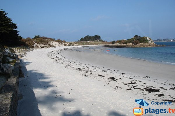 Jacobins beach in Roscoff