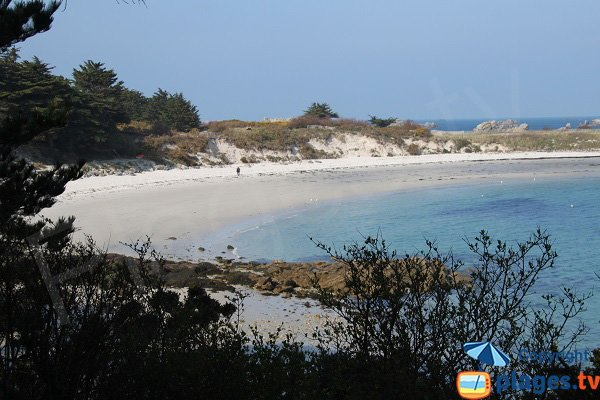 Photo de la plage des Jacobins de Roscoff