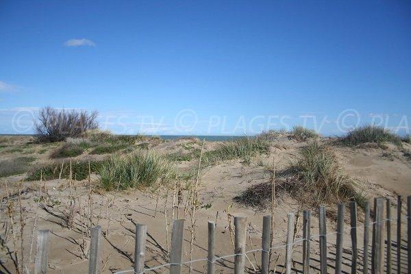 Dunes sur la plage de Jalabert à Sète