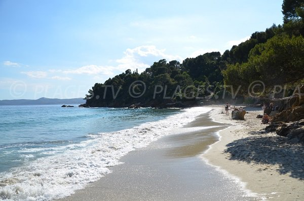 Wild beach in Lavandou - Jean Blanc
