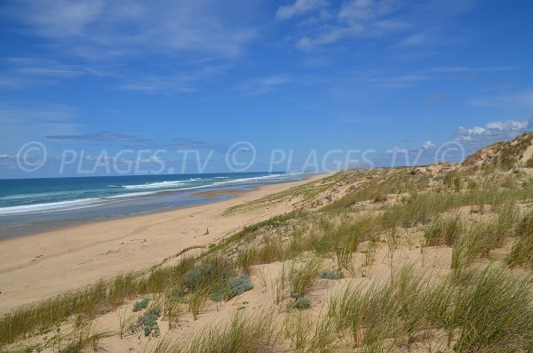 Foto della spiaggia Jenny in Francia