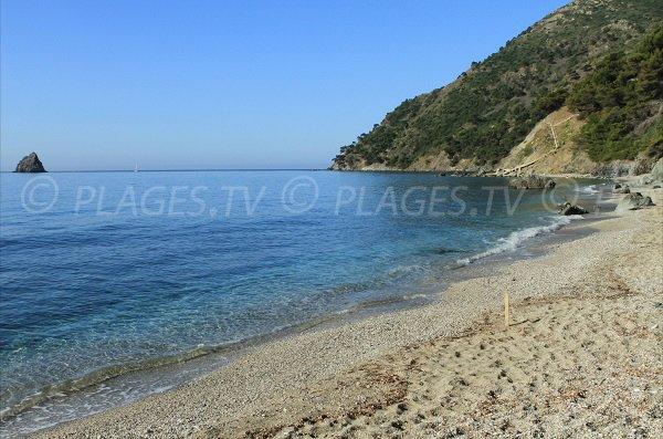 Jonquet Beach in La Seyne - nudist beach