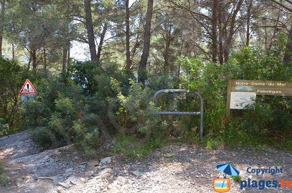 Path to the nudist beach of La Seyne - Jonquet