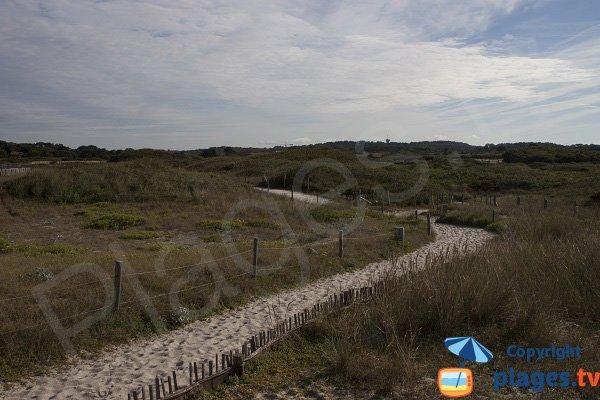 Access to Kaolins beach - Ploemeur