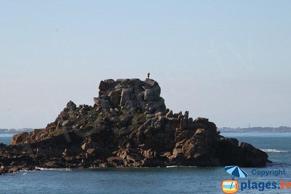 Rocher de la pointe d'Annalouesten à Plougasnou