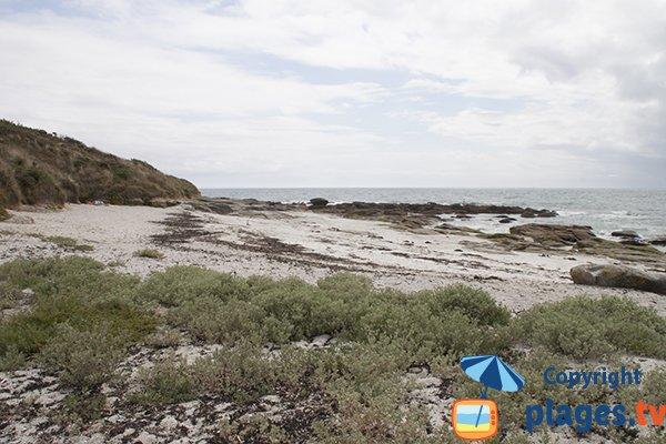 Falaises de la plage de Kerambigorn - Fouesnant
