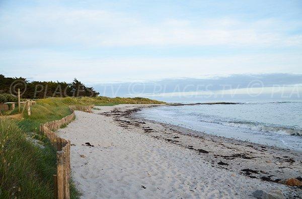 Environnement de la plage de Kercambre de St Gildas de Rhuys