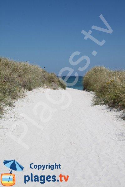 Accès à la plage de Keremma de Plounévez-Lochrist