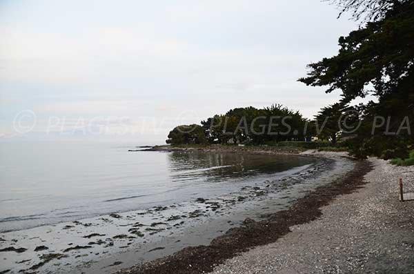 Photo de la plage de Kerfontaine à Sarzeau