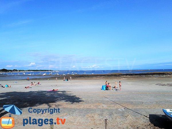 Environnement de la plage de Kerfontaine - Sarzeau