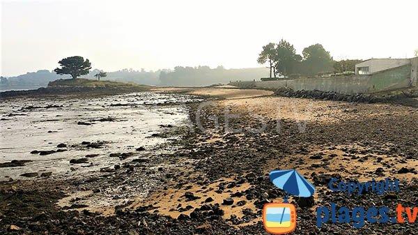 Plage de Kerguyon à marée basse à Lanmodez