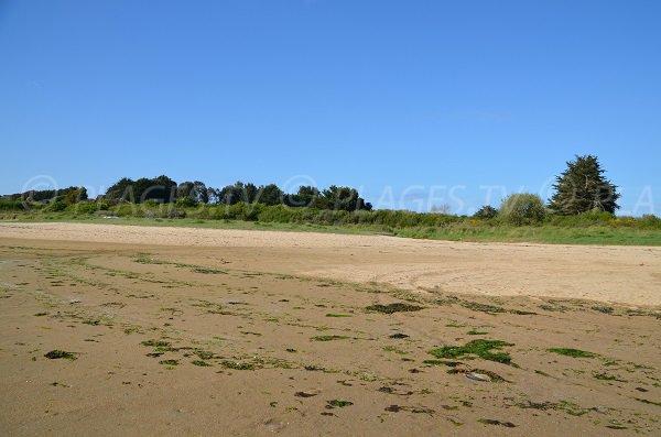 Beach in the bay of Kerlavos in Trégastel - France
