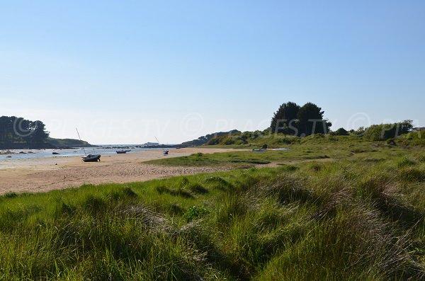 environment of Kerlavos beach in Trégastel