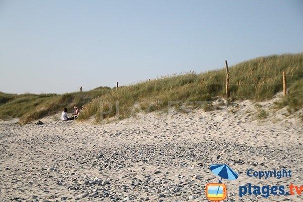 Dunes de la plage de Kermabec à Tréguennec
