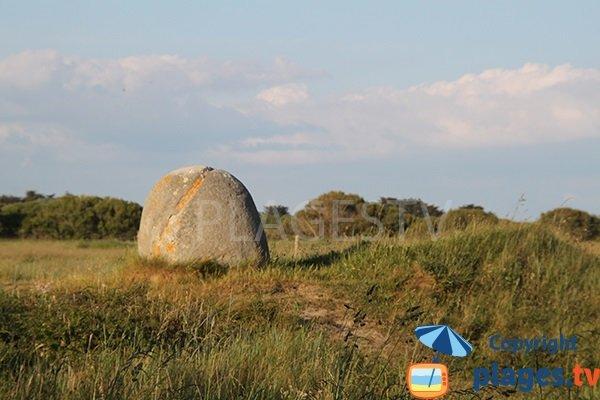 Menhirs autour de la plage de Kermabec à Tréguennec