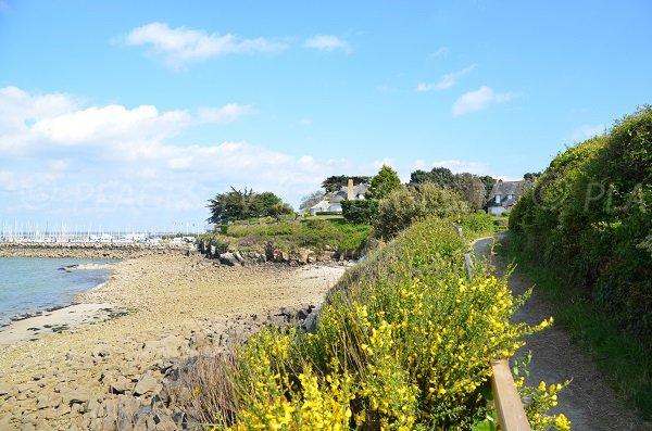 Rocce vicino al porto Haliguen a Quiberon