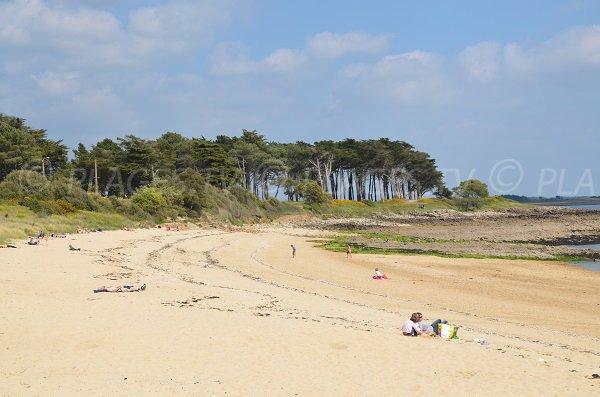 Photo de la plage de Kernevest - Saint-Philibert 56