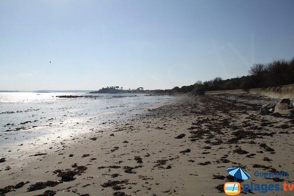 Plage de Kersaliou à marée basse - St Pol de Léon