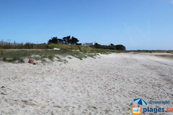 Dune de la plage du Korejou -  Plouguerneau
