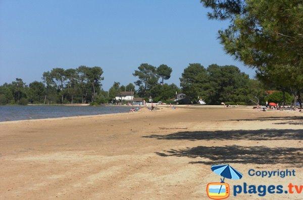 Beach of Biscarrosse lake - Navarrosse