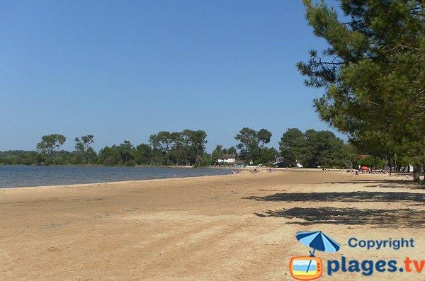 Photo de la plage du Lac de Navarrosse à Biscarrosse-Lac