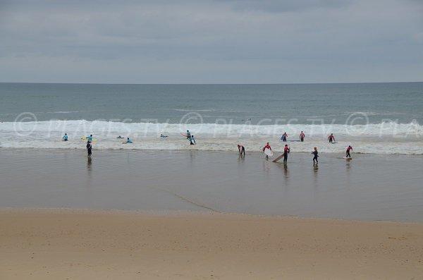 Surfeurs à Lacanau