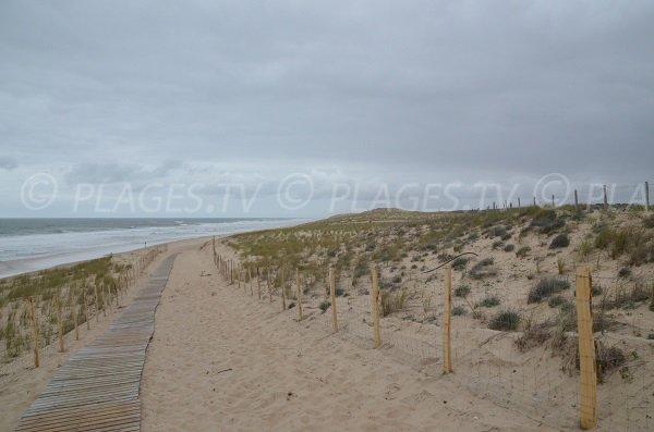 Accès à la plage Nord de Lacanau