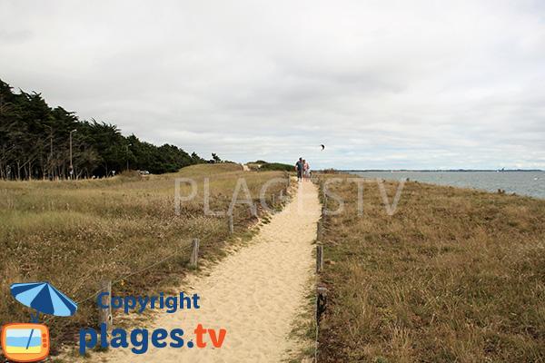 Sentier de la plage de Landrezac - Damgan