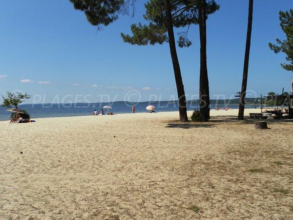 Plage de Laouga au lac de Cazaux (Gironde)