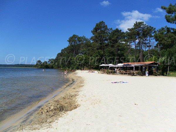 Restaurant sur la plage de Laouga au lac de Cazaux (La Teste)