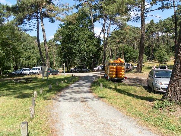 Parking de la plage Laouga à La Teste