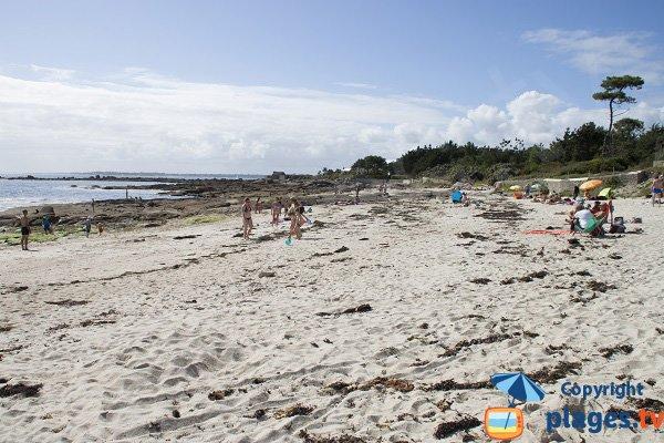 Photo de la plage du Large à Concarneau
