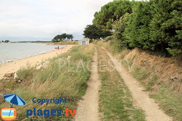 Chemin d'accès à la plage de Larmor - Damgan