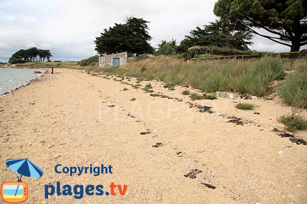 Sable sur la plage de Larmor à Damgan