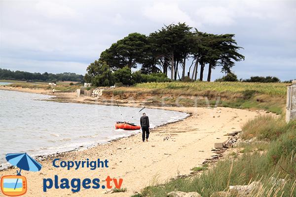 Photo de la plage de Larmor - Damgan