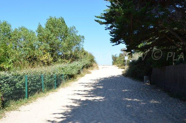 Access to Lauzin beach - Les Portes en Ré