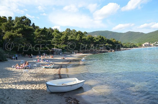 Layet nudist beach in Lavandou