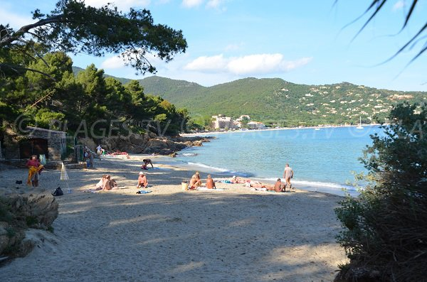 Nudist beach in the Lavandou - Layet - view on Cavalière
