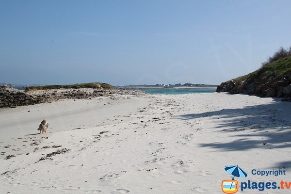 Beach of Billou in Santec - Brittany