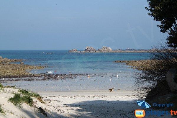 Photo of Billou beach in Santec