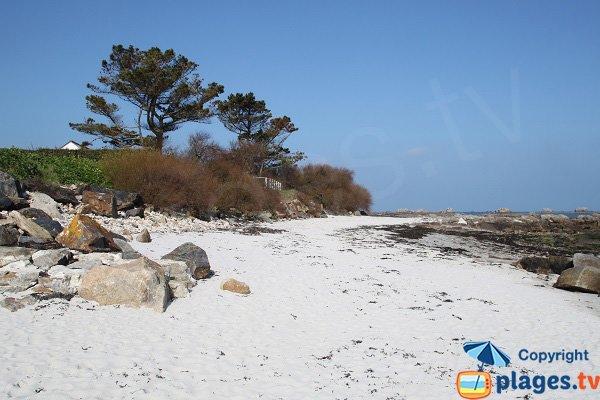 Photo de la plage de Le Prat à Santec