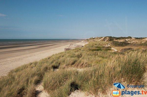 Spiaggia Selvaggio di Leffrinckoucke in Francia