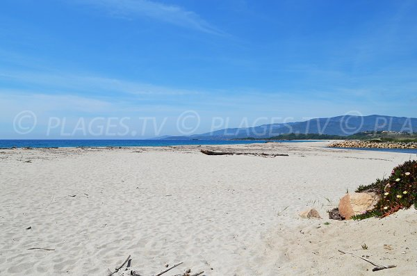 Photo of the beach at the mouth of the Liamone in Corsica