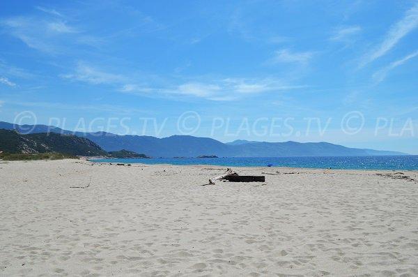 Partie sud de la plage de Liamone de Casaglione en Corse