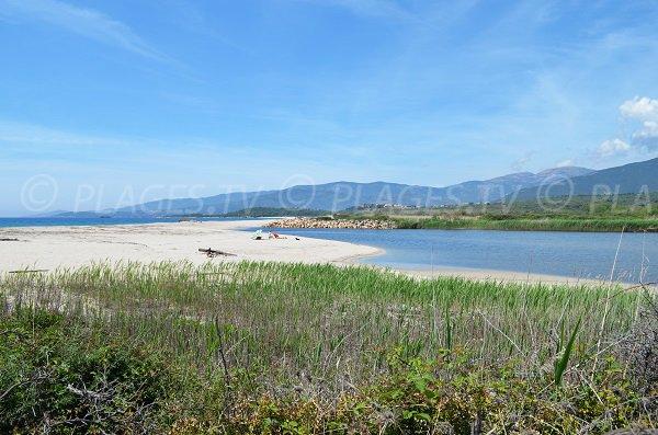 Rivière de Liamone au niveau de la plage de Casaglione