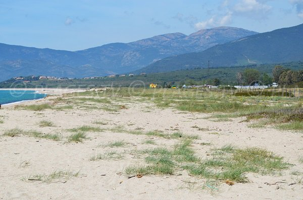 Environnement de la plage de Liamone en Corse