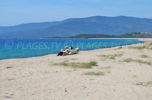 Plage sauvage en Corse entre Ajaccio et Sagone - Liamone