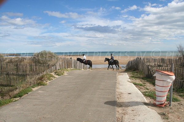 Promenade à cheval sur la plage du Lido à Sète