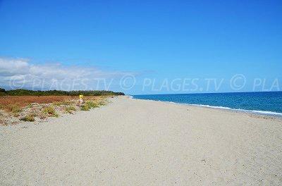 Beach in Linguizzetta in Corsica